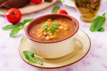 Soup with pickled cucumbers and pearl barley - rassolnik on a light background.