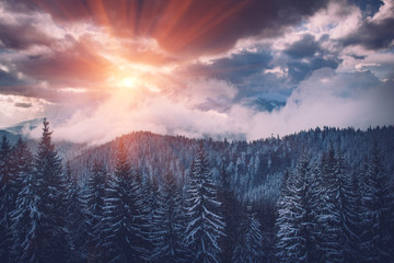 Winter Landscape in mountains. Dramatic evening sky. View of snow-covered forest at sunset. Retro style.