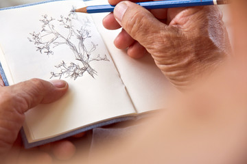 man writing a tree on sketchbook,Environment Conservative concept