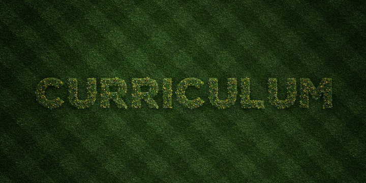 CURRICULUM - fresh Grass letters with flowers and dandelions - 3D rendered royalty free stock image. Can be used for online banner ads and direct mailers..