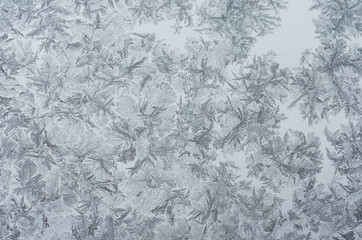 Patterns of frost on glass