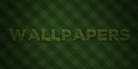 WALLPAPERS - fresh Grass letters with flowers and dandelions - 3D rendered royalty free stock image. Can be used for online banner ads and direct mailers..