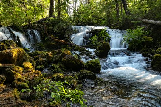Pearsony Falls Oregon 3