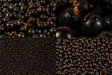 image set of black currant texture