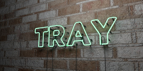TRAY - Glowing Neon Sign on stonework wall - 3D rendered royalty free stock illustration.  Can be used for online banner ads and direct mailers..