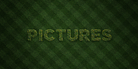 PICTURES - fresh Grass letters with flowers and dandelions - 3D rendered royalty free stock image. Can be used for online banner ads and direct mailers..
