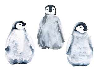 Set of three little penguins. isolated on white background. Watercolor illustration.