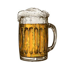 Beer in glass mug with foam. Hand drawn vector illustration
