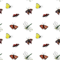 seamless pattern with watercolor drawing insects