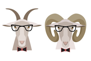 Vector Goat ,sheep in glasses and bow. cartoon flat style