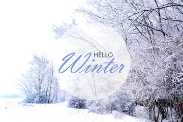Exceptional Hello Winter Wallpaper, Winter Landscape With Frozen Forest Awesome Ideas