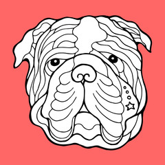 bulldog head face, hand drawing line, zentangle art, vector