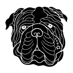 bulldog head face, hand drawing line, zentangle art, vector