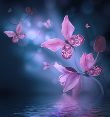 Fototapete - Amazing butterflies from the petals of orchids, floral background. Flowers and insects.