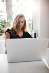 Beautiful female surfing the net on laptop