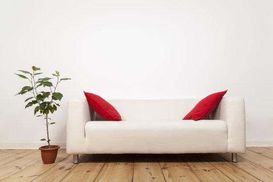 Sofa mit roten Kissen und Pflanze, freie  Wand