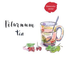 Glass cup of viburnum tea