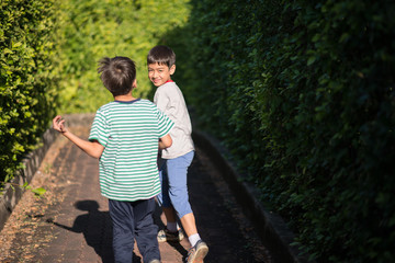 Little sibling boy walking together in green public park