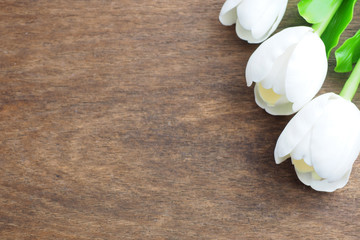 Three white tulips on wooden background.