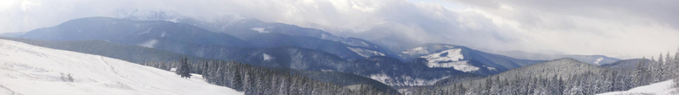 Panorama of snowed mountains