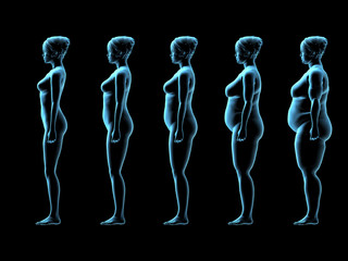 Five Female Body Types