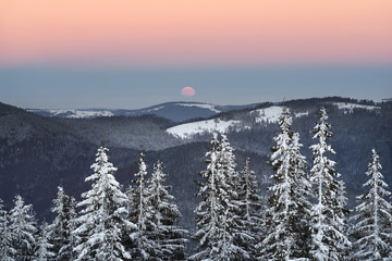 Wall Mural - moonrise in a frost