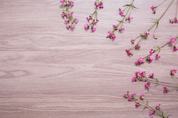 Summer flowers lie on a light background, frame with flowers, branches, leaves and petals on wooden background, flat lay, copyspace