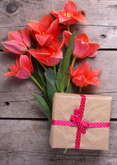 Bunch of coral tulips and wrapped box with present  on vintage