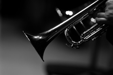 Wall Mural - Fragment of a trumpet closeup in black and white
