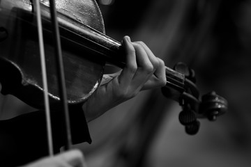 Hands of the girl playing the violin in black and white