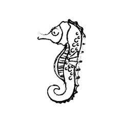 Sea horse cartoon icon vector illustration graphic design