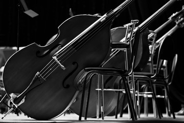 Basses standing on the stage close-up in black and white