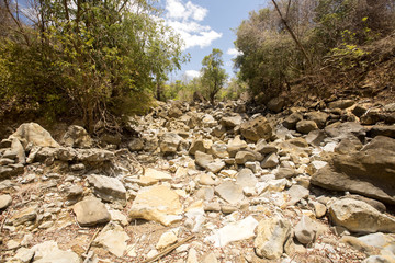 dry river bed during drought, Ankarana reservation, Madagascar