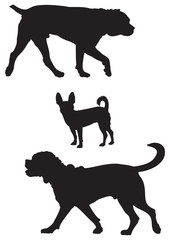 Miniature Pinscher, Cane Corso and Bordeaux dog breed vector silhouettes