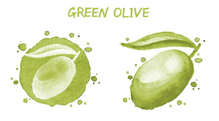 Vegetables set - green olive. Watercolor drawing