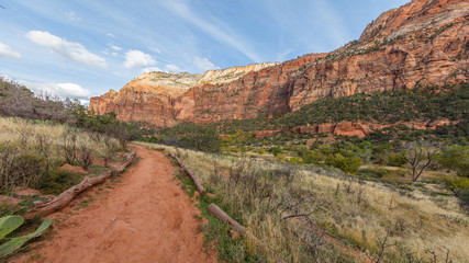 Amazing mountain landscape. The breathtaking views of the valley. Zion National Park, Utah, USA