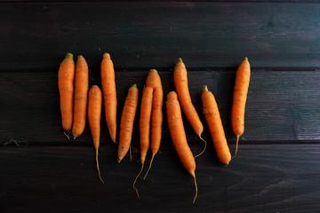 Row of raw carrots