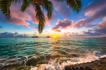 Fototapete - Beautiful Hawaiian Sunrise at Lanikai Beach