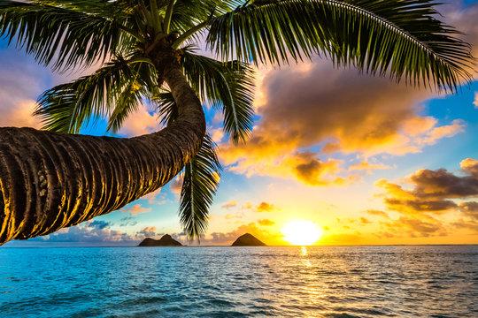 Beautiful Hawaiian Sunrise at Lanikai Beach