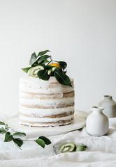 Layered sponge cake with kiwi fruit decoration