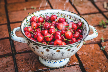 Red cherries being cleaned in bowl