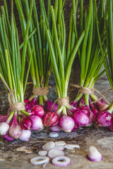 Bunches of summer onions