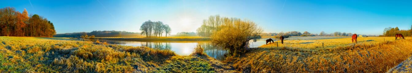 Panorama einer Landschaft im Herbst mit Pferden auf einer Weide am Fluss
