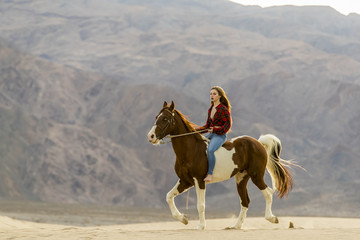 Young Female Rider And Her Horse