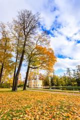 Fal forest at the catherine palace