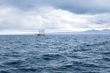 Ship in the ocean, Iceland.