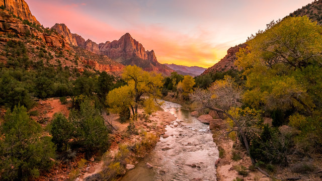 The rays of the sun illuminate red cliffs and river. Park at sunset. A beautiful pink sky. Zion National Park, Utah, USA