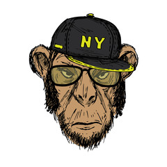 Hand Drawn Fashion Portrait of Monkey Hipster with dark cap,