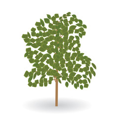 tree green leaves isolated on white background vector element for design illustration art creative