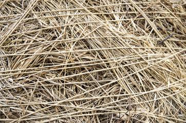 Straw and natural  rope closeup